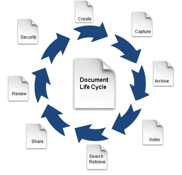 top legal document management systems